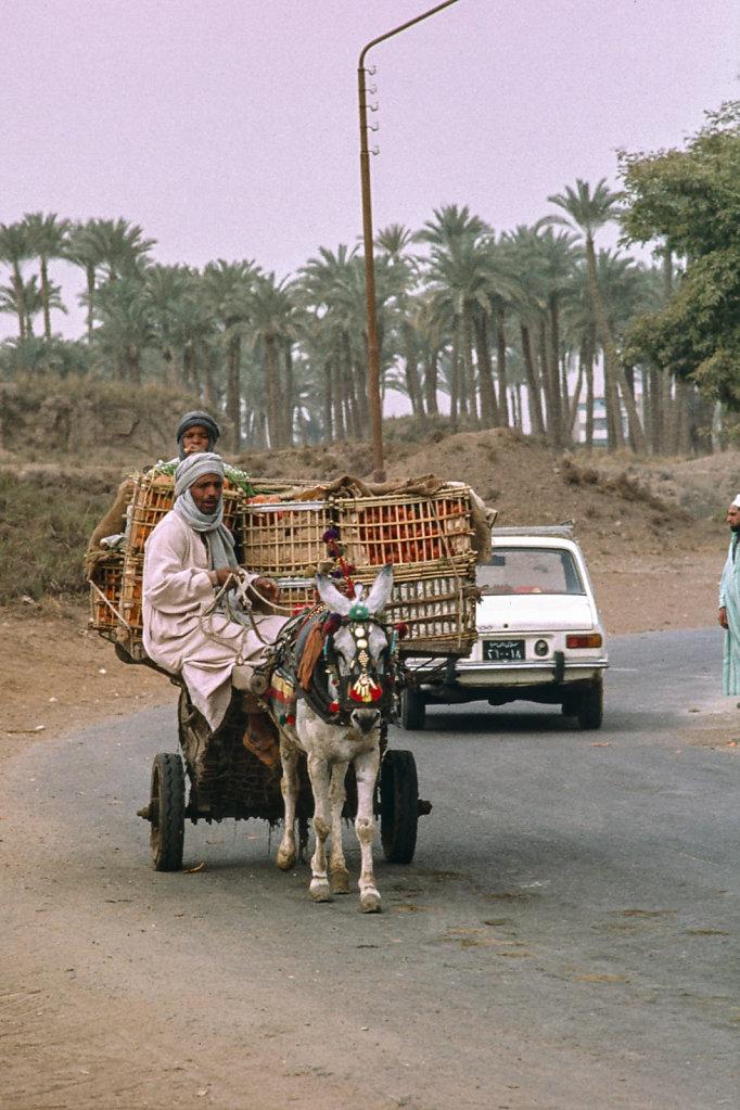 aegypten-059.jpg